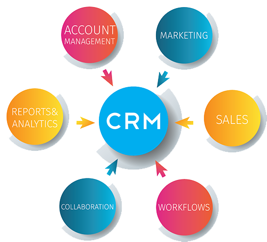 Top Crm Software Application